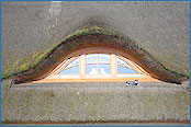 Dachfenster in Wustrow